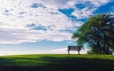 Le politiche cimiteriali tra pubblico e privato